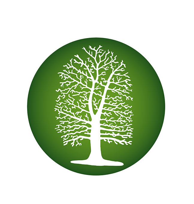 Birchfield Primary School
